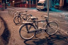 Zaragoza nevada