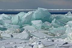 Lake Erie ice Jam (craigsanders429) Tags: ice iceshelf lakeerie lakeerieinohio snow snowandice greatlakes ohio headlandsbeachstatepark icesheets sheetice water waterways