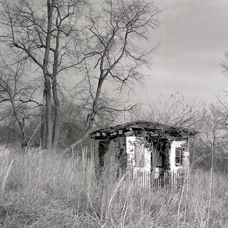 The little building at the edge of the woods