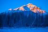 Dark & Light (stevenbulman44) Tags: light landscape canon banff alberta 2470f28l lseries snow blue sky forest tree sunset