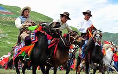 DSC_5086 (whistlingarrowhk) Tags: tibet horse racing festival trip photography