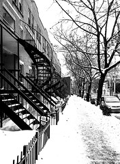 Plateau+Staircases+Lined+Up+in+Winter