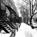 Plateau Staircases Lined Up in Winter thumbnail