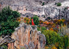 Zhenya (shadobb) Tags: bokehrama 70200gm turkey travel red nature