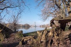 Berlin: Blick von der Halbinsel Stralau über die Spree Richtung Innenstadt - Looking from Stralau Peninsula over the Spree towards the city centre (riesebusch) Tags: berlin friedrichshain stralau