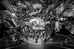 #62 Fractured (tokyobogue) Tags: tokyo japan harajuku nikon nikond7100 d7100 tamron tamron1024mmdiiivc reflections mirrors blackandwhite blackwhite monochrome stairs urban fractured tokyuplaza omotesando
