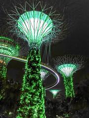 sin17-gardens-by-the-bay-2017-11-10-STF-L09-44-72dpi-2 (datenhamster.org) Tags: singapore singapur 2017 holiday travel gardens bay night