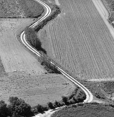 Rural path (Américo Meira) Tags: portugal caparica path caminho bw decima challengeyouwinner cyunanimous