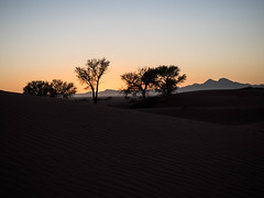 Juste before sunrise (Melvinia_) Tags: olympusomdem1 namibia namibie desert désert namibrand naukluft namibrandfamilyhideout landscape sand africa afrique afriqueaustrale sunrise leverdesoleil geoafrica