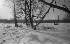 Scan-180213-0004 (Oleg Green (lost)) Tags: winter snow voigtlander sskopar 4025 bessat fomapan400 35mm bw film rodinal
