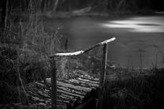 20180206-L1003454 (Rene_1985) Tags: leica m 9 p rangefinder messucher 50mm 095 noctilux asph bokeh dof monochrom bw black white schwarz weis light licht schatten shadow teich eis winter ice cold kalt