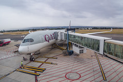 Qatar Airways | A350-900 | A7-ALM (Anthony Kernich Photo) Tags: a7alm airbus a350xwb airbusa350 widebody a350 airplane aircraft airplanepicture airplanephotograph airplanephoto commercialaviation plane aviation jet olympusem10 olympus olympusomd planespotting planespot aeroplane flight flying airline airliner raw oneworld adelaide adelaideairport ypad qatar qatarairways
