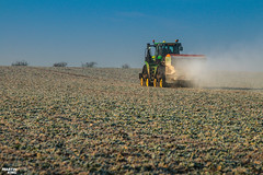 Regenerative fertilization of winter oilseed rape   JOHN DEERE // AMAZONE (martin_king.photo) Tags: spring springwork2018 regenerative fertilization regenerativefertilization johndeere johndeere8200 jdrx johndeere9620rx amazone amazonezats4200 fertilizerspreader spreader oilseed rape springwork powerfull martin king photo agriculture machines strong agricultural great day czechrepublic sky fans work place big machinery yellow tschechischerepublik martinkingphoto welovefarming working modern landwirtschaft green red colorful colors blue mais maize corn photogoraphy photographer canon tractor tracs frozen frosty morning frost cold worker