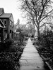 Autumn walk | Explored 02.27.18 (Web-Betty) Tags: denver baker colorado bnw blackandwhite sidewalk street