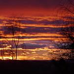 A l'aube, Bosdarros, Béarn, Pyrénées Atlantiques, Nouvelle-Aquitaine, France. thumbnail