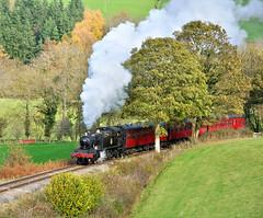 5199 at Garthydwr. (johncheckley) Tags: d90 uksteam tank passengers train suburban trees autumn railway