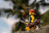 Pirate and teddy bear (Ballou34) Tags: 2017 7dmark2 7dmarkii 7d2 7dii afol ballou34 canon canon7dmarkii canon7dii eos eos7dmarkii eos7d2 eos7dii flickr lego legographer legography minifigures photography stuckinplastic toy toyphotography toys stuck in plastic pirate teddy bear island palm tree sword nouméa provincesud nouvellecalédonie nc