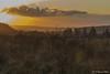 Coucher de soleil sur les Hautes Fagnes-7 (jipebiker) Tags: coucherdesoleil sunset hautesfagnes belgique belgium nuage cloud fagne fens ciel sky tree landscape heurebleue bluehour
