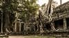 Angkor   |   Preah Khan Temple (JB_1984) Tags: preahkhan temple stone ruins decay tree root khmer siemreap krongsiemreap cambodia cambodge kampuchea nikon d500 nikond500