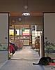 One End of the House to the Other (sjrankin) Tags: 15february2018 edited animal cat yubari hokkaido japan tigger hdr kitchen bedroom window glare light food floor door