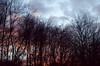 Go tell it to the trees... (_J @BRX) Tags: sunset winter burrs burrscountrypark bury lancashire england uk february 2018 trees sky cloud nikon d5100 sun