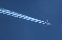 Lufthansa MD11 Freighter D-ALCF (megatroncox) Tags: lufthansa md11 freighter cargo mcdonnell doughlas three engine jet plane german fraankfurt