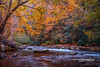 Flowing Mountain Stream (tclaud2002) Tags: stream mountain mountainstream water rocks trees nature mothernature landscape outdoors colors colorful fall foliage fallcolors fallfoliage autumn northcarolina andrews usa