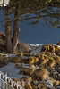 Andorra rural: Canillo, Vall d'Orient, Andorra (lutzmeyer) Tags: 300mm andorra canillo canilloparroquia canoneos5dmarkiii europe iberia iberianpeninsula lutzmeyer pirineos pirineus pyrenees pyrenäen ransol valldorient bergpfad bild cami enero foto fotografie fussweg gener hivern iberischehalbinsel image imagen imatge invierno januar january landscape landschaft lutzlutzmeyercom neu nieve paisaje paisatge photo photography picture rural schnee snow sonnenaufgang sortidadelsol sunrise tele vallorient village winter canillovalldorient