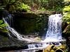 Mount Field Waterfalls 6 (Remko Tanis) Tags: australia field forest mount national nature park tasmania water waterfall