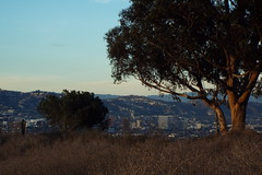 DSCF7105_cropped (Kelson) Tags: hahnpark kennethhahnstaterecreationarea hiking nature goldenhour