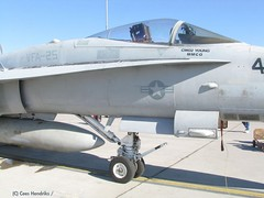 "McDonnell-Douglas FA-18C Hornet 25 • <a style=""font-size:0.8em;"" href=""http://www.flickr.com/photos/81723459@N04/25959398348/"" target=""_blank"">View on Flickr</a>"
