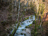 River (Lanceflot) Tags: river cascade bugey montain tree nature wild beautiful power earth hiking