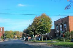 Drive By 873, Missing Fall (Dimi Sahn) Tags: urban landscape sreet window car driving sky road pavement