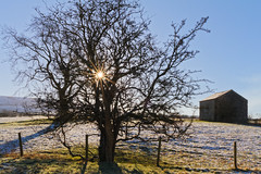 Cold Sun (scottprice16) Tags: england lancashire clitheroe salthills naturereserve barn tree sunburst sunstar winter february 2018 field fence colour sky grass snow cold blue outdoors landscape hills pennines canon canoneos7d sigma 1750mmf28 ribblevalley