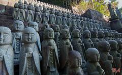 Little Buddha (Benisius Anu) Tags: statue hasedera temple buddha kamakura kanagawa japan