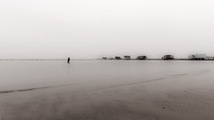 solitude (Sentieri) Tags: pescare fish pescatore fisherman solitudine solitude spiaggia beach mare sea biano e nero blacwhite sepia seppia nikon d700 sigma 24mm art people pioggia rain sun sole fishing