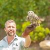 Nothing beats an owl staring at you (claudia@flickr) Tags: animals australia mosman nsw tarongazoo birdshow newsouthwales au