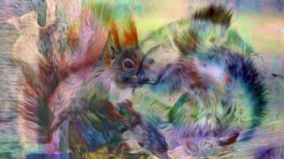 Bildschichten Eichhoernchen 20