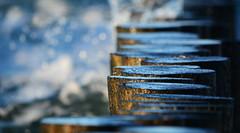 water plays (kalakeli) Tags: zingst ostsee dars mecklenburgvorpommern balticsea october oktober 2015 blue blau wasser water buhnen