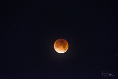 Once In A (Super) Blue (Blood) Moon (Total Eclipse) (BoneFishPhotography) Tags: superbluebloodmoon fullmoon totaleclipse lunareclipse moon bloodmoon luna celestial sky night lasvegas vegas westcoast nevada nv nikon space leo fire lion nature outdoors photography bonefishphotography america beautiful dof depthoffield earlymorning usa unitedstates january morning outside pretty peaceful quiet tranquil sun travel thenatureconservancy winter nightphotography nightsky predawn stars tripod nikkor zoom 300mm