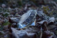 20180209_054_2 (まさちゃん) Tags: 霜 ダイヤモンド diamond 光 冬
