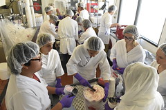 _P176776 (Jordan College of Ag Sciences and Technology) Tags: agdiscoverycamp creamery