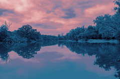 perfection ... in reflection (mariola aga) Tags: river trees riverbanks sky clouds water reflection symmetry serene landscape art coth coth5 alittlebeauty saariysqualitypictures thegalaxy