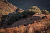 Stazzu (Pierrotg2g) Tags: corse corsica paysage landscape nature balagne balanina nikon d90 tamron 70200