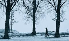 Winter Blues (Edinburgh Photography) Tags: nature outdoors landscape trees walking woman dog monochrome documentary photojournalism inverleith park nikon d7000