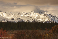 Winter preview (Ana Isabel Iranzo) Tags: alaska2015 snowcapped mountain landscape fall autumn canon anais iranzo