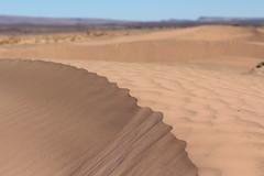 Marokko Dez17 Jan18 066 (izzaga) Tags: marokkodez17jan18 sand dunes sahara desert morocco
