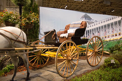 flower and garden show. march 2015 (timp37) Tags: chicago illinois flower garden show march 2015 carriage horse navy pier