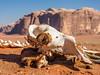 LR Jordan 2017-4170469 (hunbille) Tags: birgittejordan92017lr jordan wadi rum wadirum desert protected saabit area saabet wadisaabit south skeleton skull camel