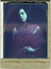 C. (denzzz) Tags: portrait polaroid polaroid59 expired instantfilm analogphotography filmphotography wista45dx 4x5 largeformat fujinona 180mm